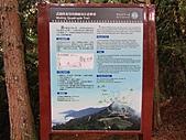 武陵楓正紅:IMG_1620.jpg