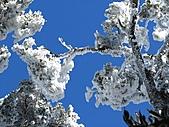 雪蓋復興尖、冰封塔曼山:IMG_2527.jpg