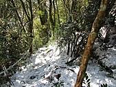 雪蓋復興尖、冰封塔曼山:IMG_2483.jpg