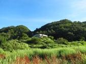 羅葉尾山~馬武佐野郡山縱走:IMG_7493.jpg