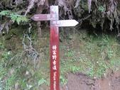 特富野古道:IMG_6511.jpg