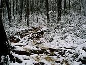北插雪景:P3050075