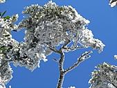 雪蓋復興尖、冰封塔曼山:IMG_2528.jpg