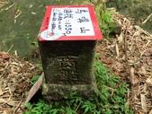 新竹五峰郷大窩山、鳥嘴山:IMG_7753.jpg