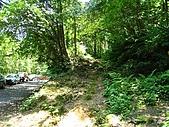 大溪金面山:IMG_7385.jpg