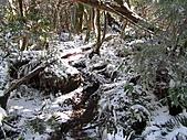 雪蓋復興尖、冰封塔曼山:IMG_2457.jpg