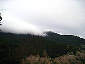 小烏來登赫威山、赫威前峰、木屋遺址、赫威神木群:IMG_5019.jpg