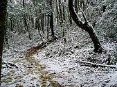 北插雪景:P3050067