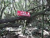 滿月圓天德巷登拉卡山、多崖祕徑上多崖、北插天山:IMG_2224.jpg