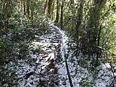 雪蓋復興尖、冰封塔曼山:IMG_2437.jpg