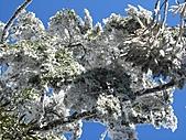 雪蓋復興尖、冰封塔曼山:IMG_2529.jpg