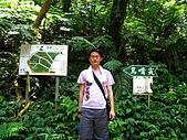大溪金面山:IMG_7386.jpg