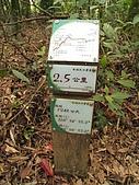 水社大山:IMG_2515.jpg