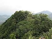 東亞最美麗的百合:IMG_0807.jpg