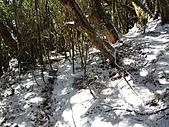 雪蓋復興尖、冰封塔曼山:IMG_2460.jpg