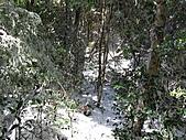 雪蓋復興尖、冰封塔曼山:IMG_2485.jpg