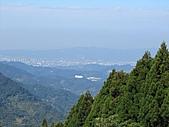 熊空休閒農場登熊空山、竹坑山:IMG_1750.jpg