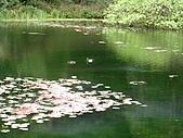 福山植物園:IMG_6406.jpg