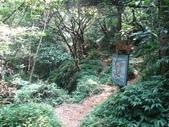 東勢格古道、臭頭山:IMG_6902.jpg