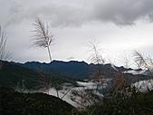 小烏來登赫威山、赫威前峰、木屋遺址、赫威神木群:IMG_5021.jpg
