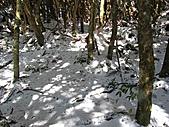 雪蓋復興尖、冰封塔曼山:IMG_2461.jpg