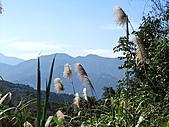 熊空休閒農場登熊空山、竹坑山:IMG_1753.jpg