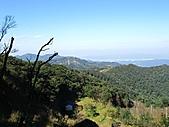 熊空休閒農場登熊空山、竹坑山:IMG_1754.jpg