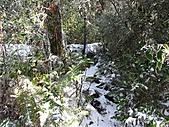 雪蓋復興尖、冰封塔曼山:IMG_2486.jpg