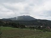 陽明山、竹子湖賞花行:IMG_3011.jpg
