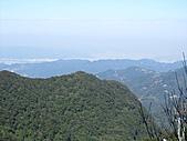熊空休閒農場登熊空山、竹坑山:IMG_1756.jpg