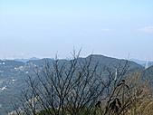 熊空休閒農場登熊空山、竹坑山:IMG_1758.jpg