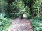 宜蘭大同鄉九寮溪生態步道:IMG_6936.jpg