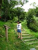 獅公髻尾山:IMG_8138.jpg