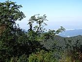 熊空休閒農場登熊空山、竹坑山:IMG_1762.jpg