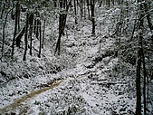 北插雪景:P3050078