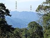 熊空休閒農場登熊空山、竹坑山:IMG_1763.jpg