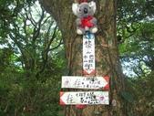 三芝枕頭山:IMG_6662.jpg
