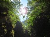 向陽、三叉、嘉明湖、栗松野溪溫泉---DAY 3:IMG_1693.jpg