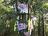 熊空休閒農場登熊空山、竹坑山:IMG_1766.jpg
