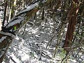 雪蓋復興尖、冰封塔曼山:IMG_2463.jpg
