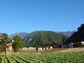向陽、三叉、嘉明湖、栗松野溪溫泉---DAY 3:IMG_1678.jpg