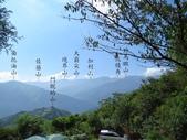 新竹五峰郷大窩山、鳥嘴山:IMG_7744.jpg