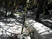 雪蓋復興尖、冰封塔曼山:IMG_2464.jpg