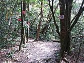 小烏來登北插天山:IMG_3240.jpg