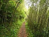 卡拉莫基、加九寮步道、林望眼山:IMG_2421.jpg