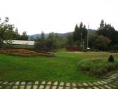 野馬瞰山森林步道、榛山步道、榛山:IMG_7244.jpg