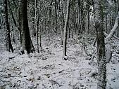 北插雪景:P3050064