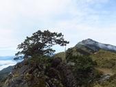 向陽、三叉、嘉明湖、栗松野溪溫泉---DAY 2:IMG_1606.jpg