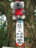 三芝枕頭山:IMG_6663.jpg