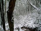 北插雪景:P3050076